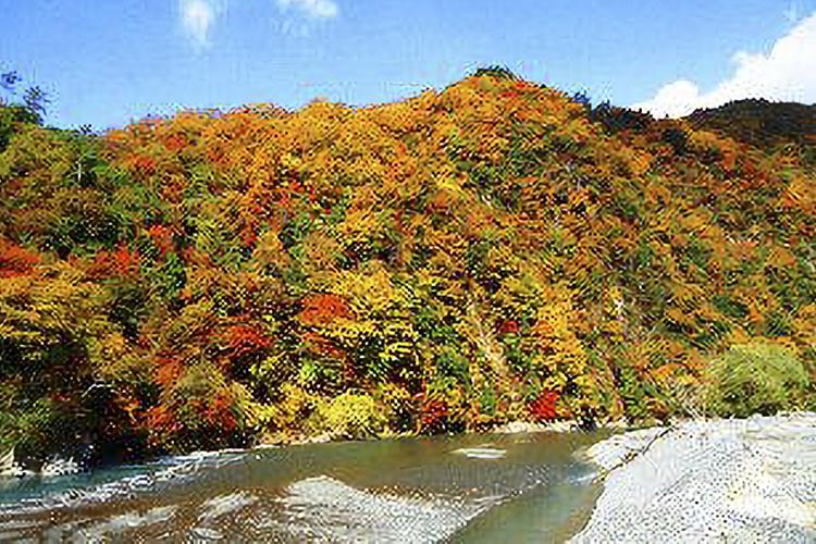 遠山川渓谷(天龍村)
