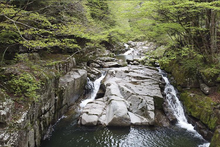 丸畑渓谷・瀬戸の滝(売木村)