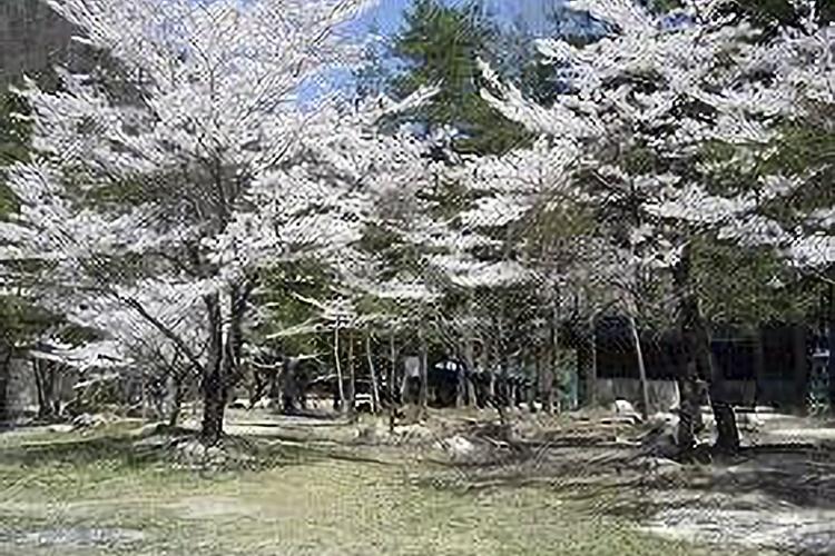 二瀬キャンプ場(阿南町)